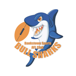 Current bull shark logo