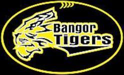 Thumb tigers logo