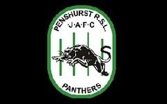 Thumb panthers logo2